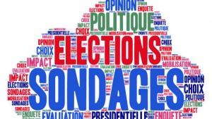 Utilité et effets des sondages électoraux