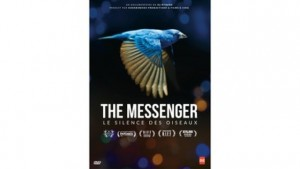 The Messenger  : le silence des oiseaux